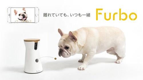 世界初!おやつが飛び出すドッグカメラ『Furbo』